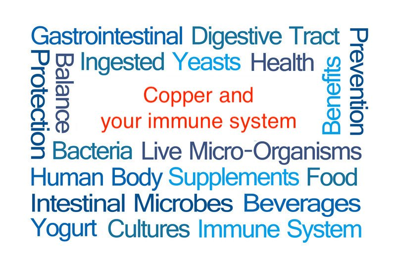 COPPER AND THE IMMUNE SYSTEM